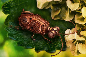 Clockwork beetle by Vera-Orlova