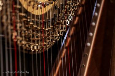 Harp to tune