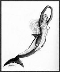 Hourglass mermaid by Chael