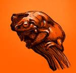 Golden Frog from Stream