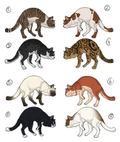Adoptables - Domestic cat CLOSED by Anipurk