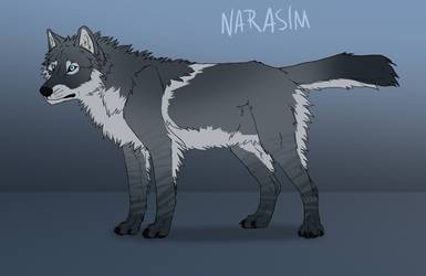 Adoptables - Canine CLOSED