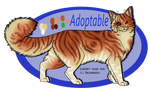 Adoptable - Red tabby Closed by Anipurk