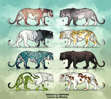 Adoptable - Tigers REDUCED by Anipurk