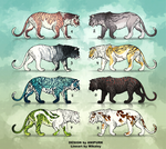 Adoptable - Tigers REDUCED