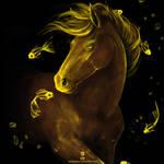 Golden Dreams by Audodo