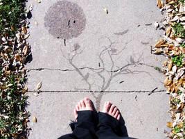 Distant Feet by FrankMunoz
