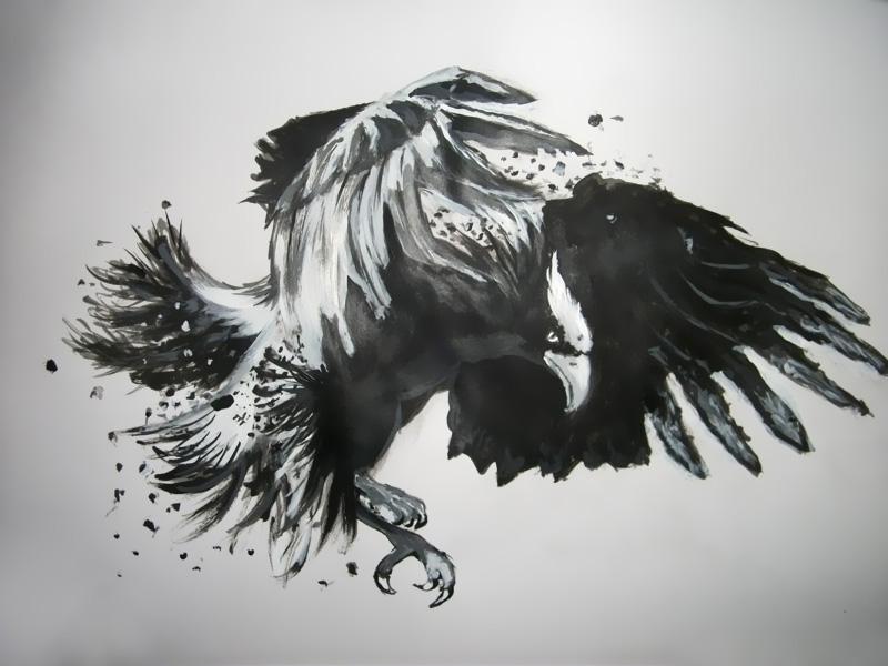 Eagle by cosima66