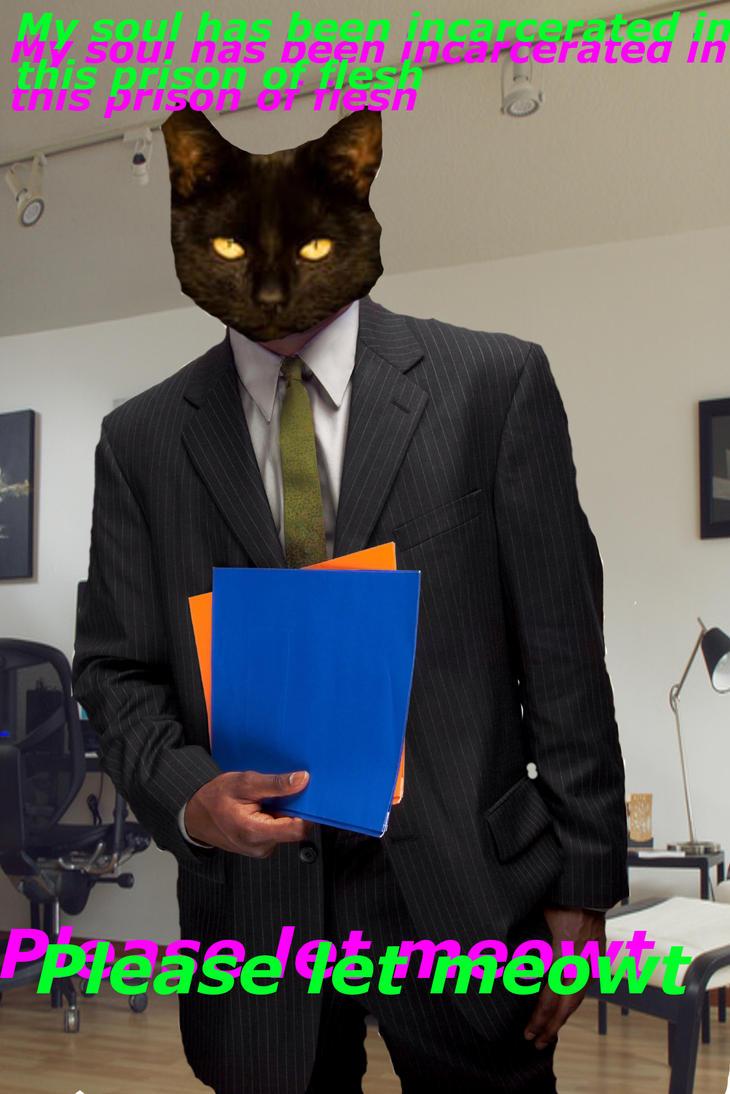 Business Cat Meme Maker
