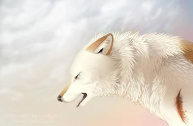 Off-White - Gebo by oOChErRyThEbErRyOo
