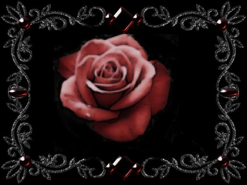 The friendship rose by analovecatdog on deviantart for What color is the friendship rose