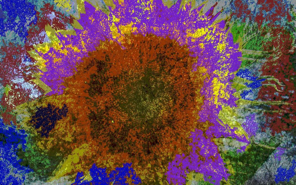 Sunflower glory by analovecatdog