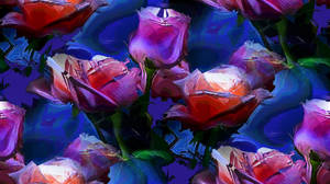 glass roses happy birthday by analovecatdog