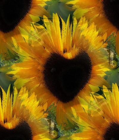 heart sunflower happy birthday by analovecatdog on DeviantArt