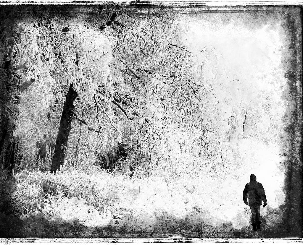 Winter by kereszteslp