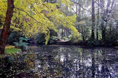Alfred Nicholas Gardens 4 by daniellepowell82