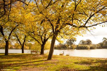 Autumn Day by daniellepowell82