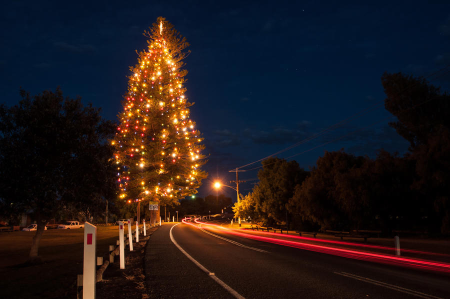Point Lonsdale Christmas tree by DanielleMiner