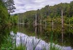 Lake Elizabeth 2 by daniellepowell82