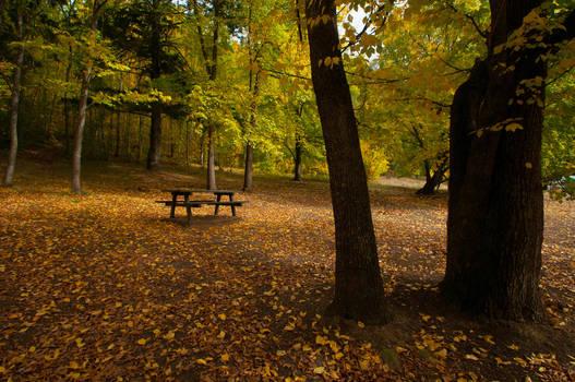 Mt Franklin Autumn 2