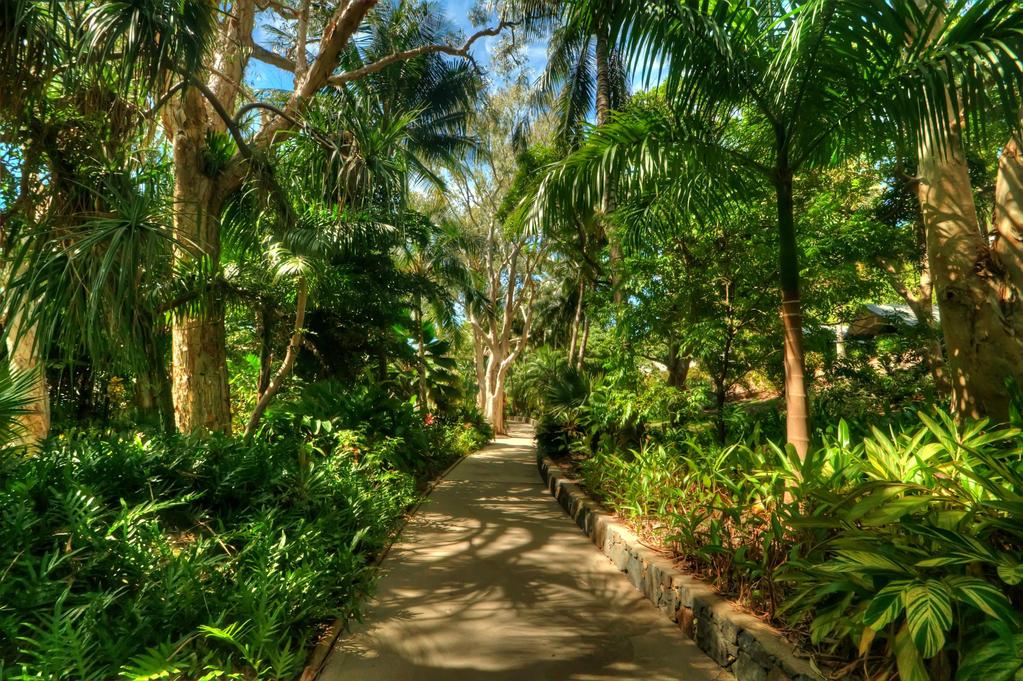 Hamilton Island Walkway by DanielleMiner