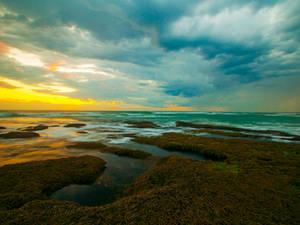 Queenscliff Sunset