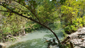 Texas Hill Country 024