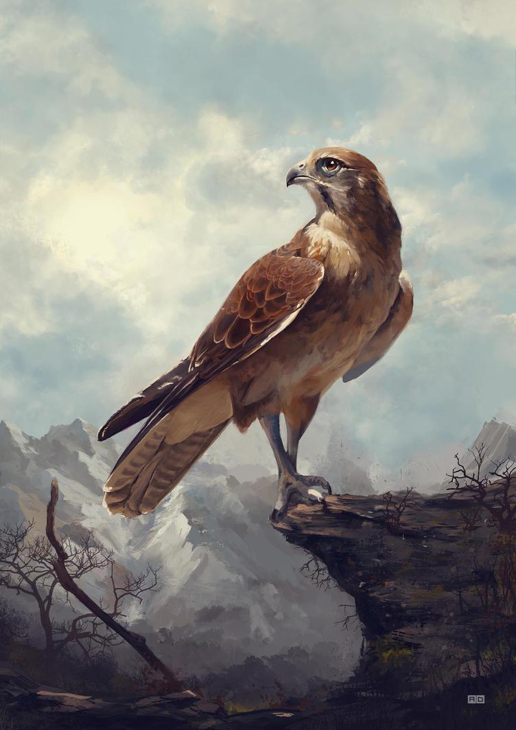 Falcon Mountain Final by Laggyzaki