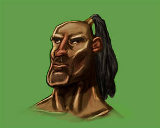 Dude with a Ponytail