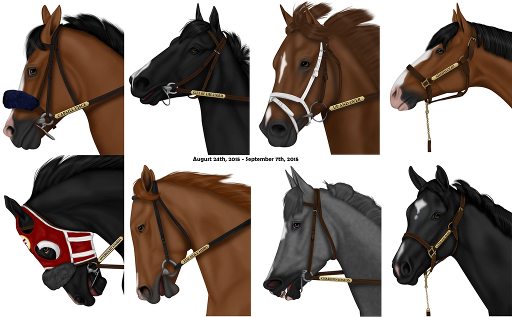 August 24 2015 - September 07 2015 Headshots by eclipsedsky