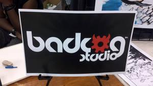 Comicpalooza 2011 today pic  3