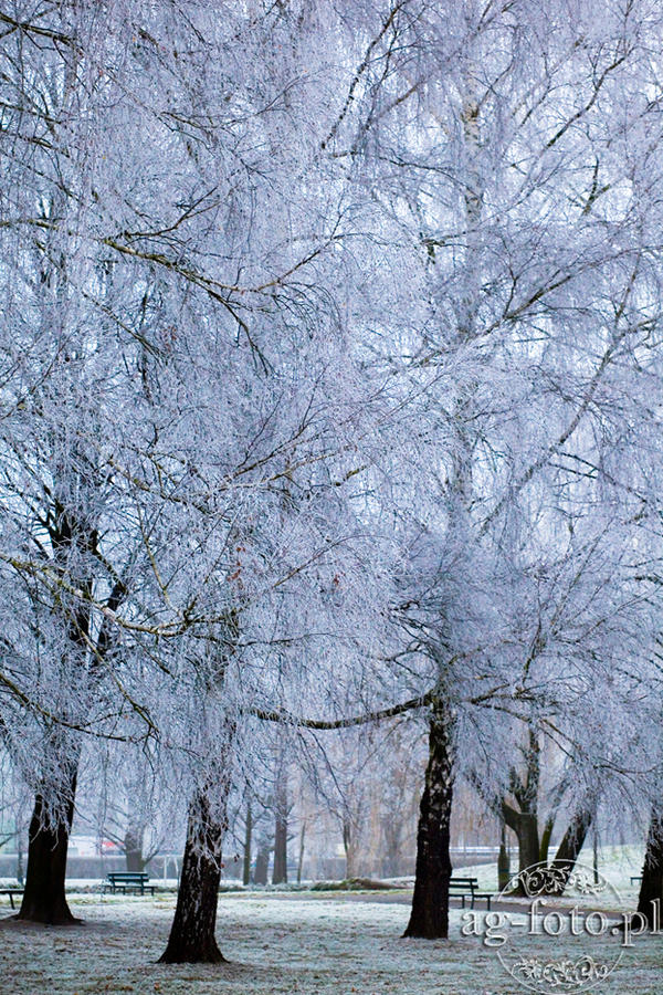 4 Winter in Poland 2014 || AG-foto.pl by e-uphoria