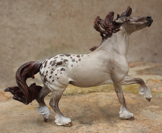 Sheza Carnival custom painted lilac roan appy by arcadian7