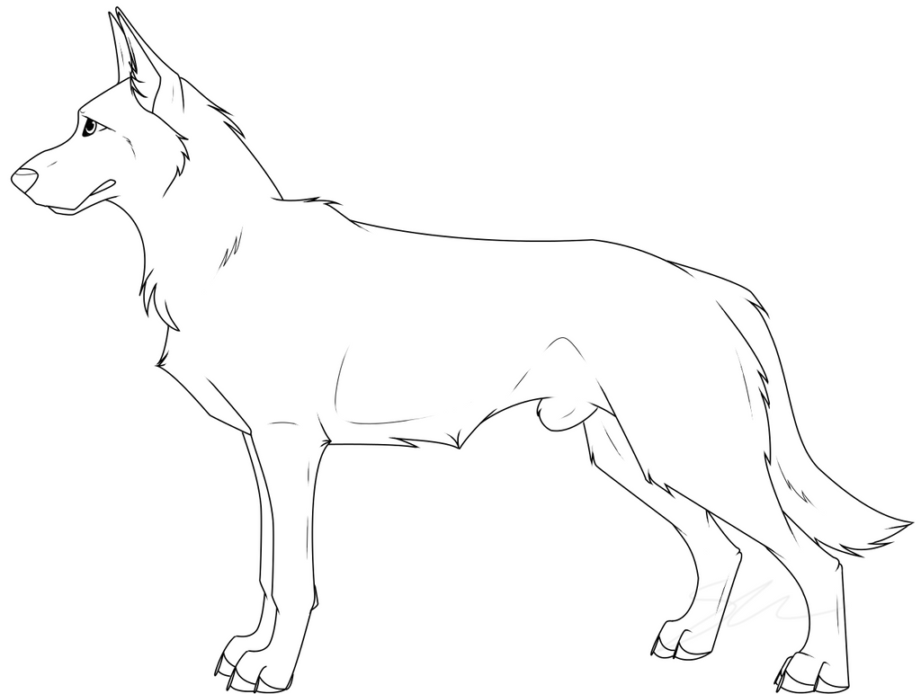 Image Result For Husky Coloring Pages