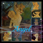 ( Lady and the Tramp 2 ) Angel Collage