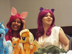 ( MLP ) Pinkie Pie and Berry Punch Hurricon 2015 4