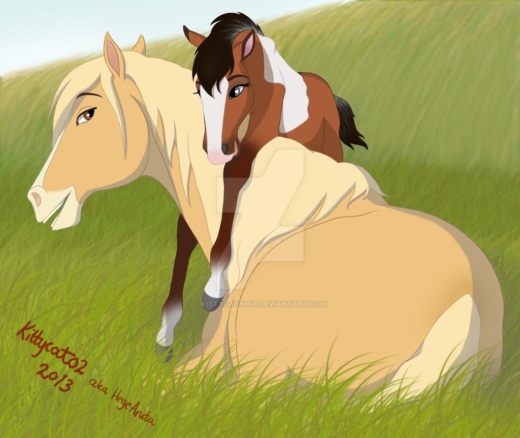 375 best spirit stallion of the cimarron images on pinterest