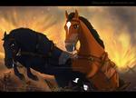 War Horse - Contest Entry