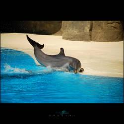 _Splash'n'Tears-Special_
