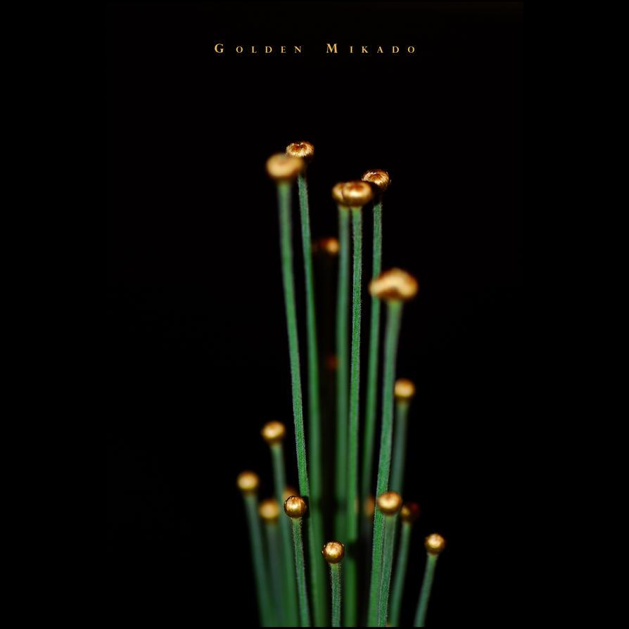 Golden Mikado 04 by GregorKerle