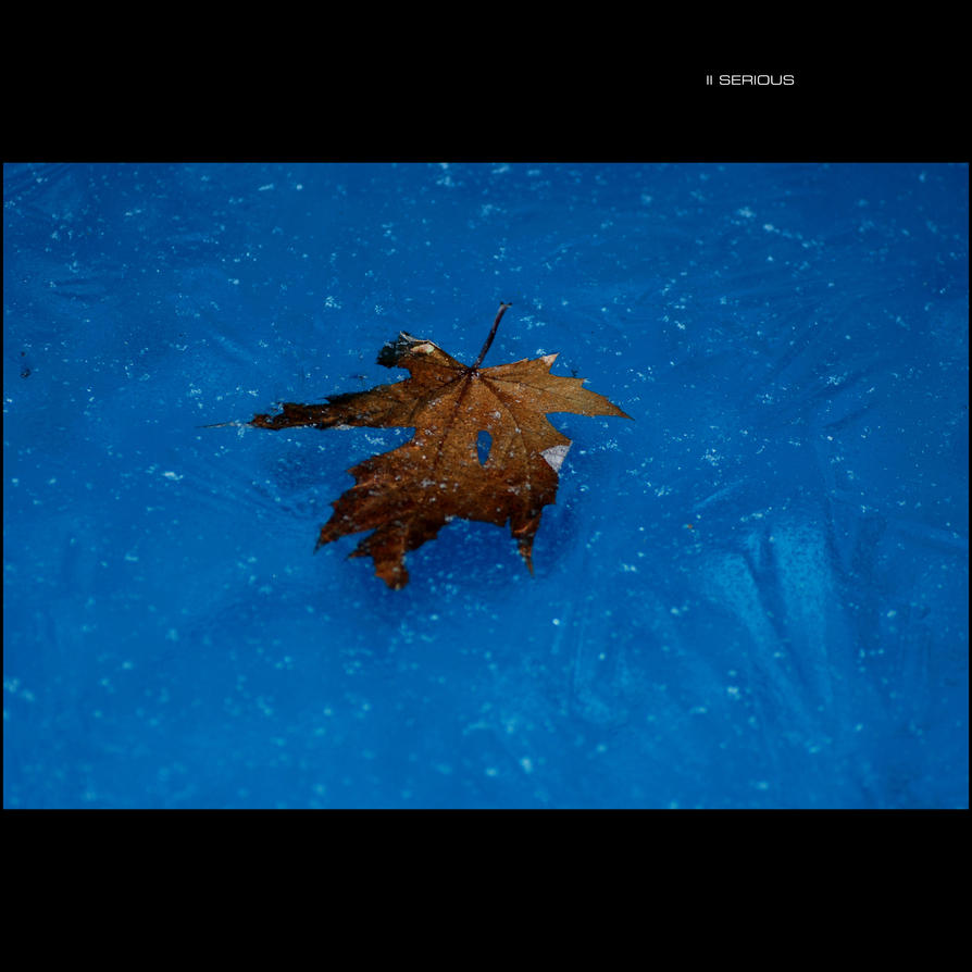 _II Serious 02_ by GregorKerle