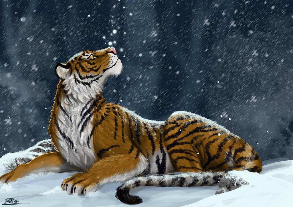 Tiger snow by Evilddragonqueen
