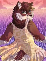 Into the lavender field