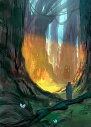 Sunlight in the forest by elbardo