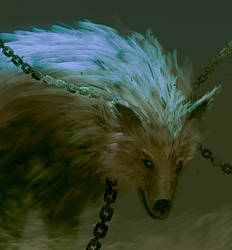 Wolf chained