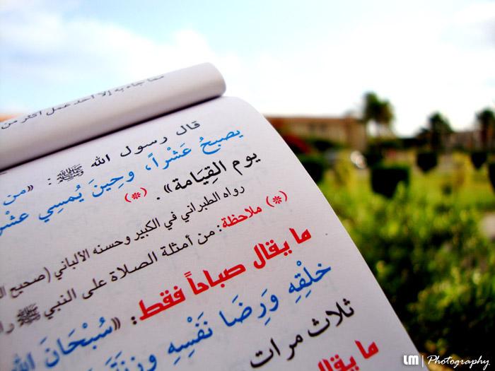 Morning Prayers by muslim2proud