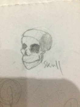 Practice #1 skull