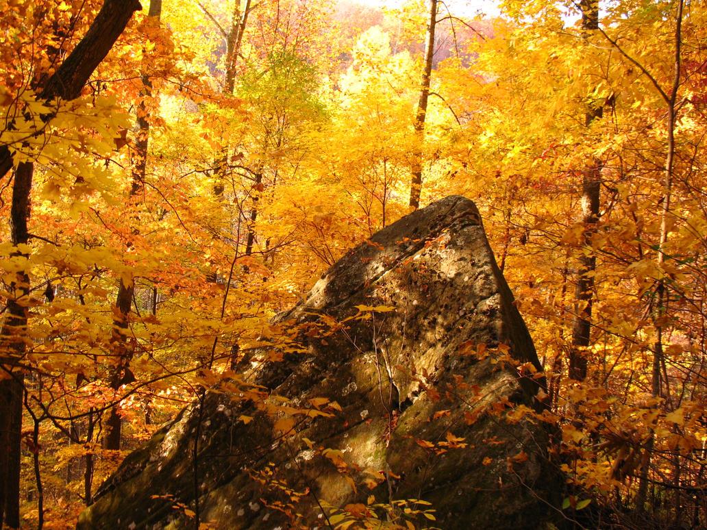 Triangular Forest by GGRock70