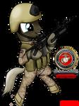 [request] USMC force recon pony