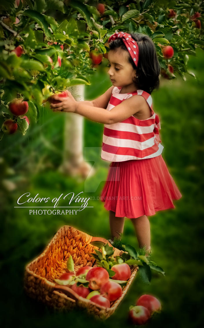 Apple picking by vinigal123
